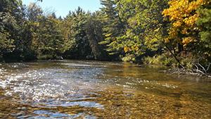 River gravel bottom